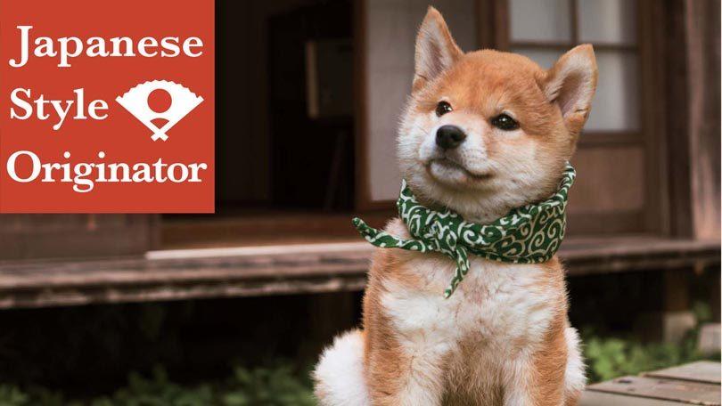 Japanese Style Originator Netflix