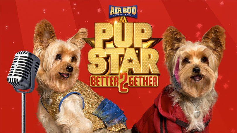 Pup Star Samen Staan We Sterker Netflix