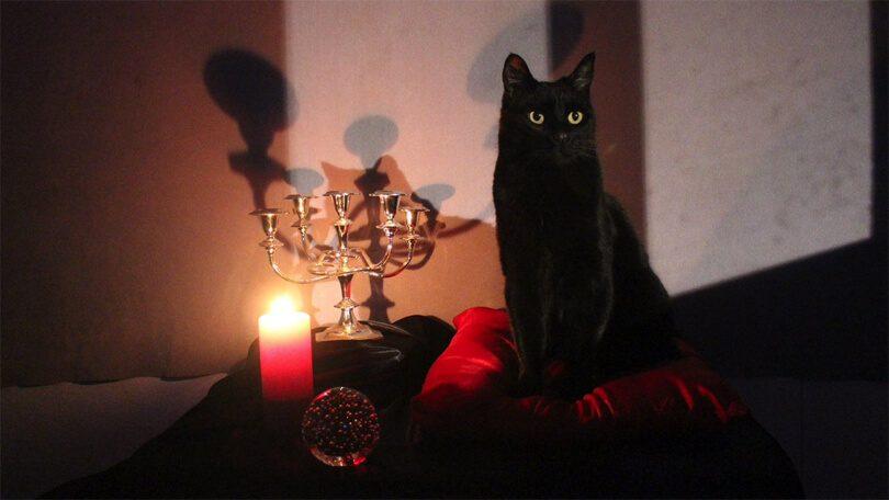 Salem Sabrina