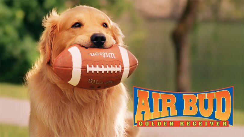 Air Bud Golden Receiver Netflix