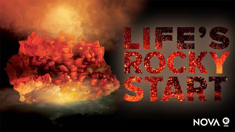 lifes rocky start