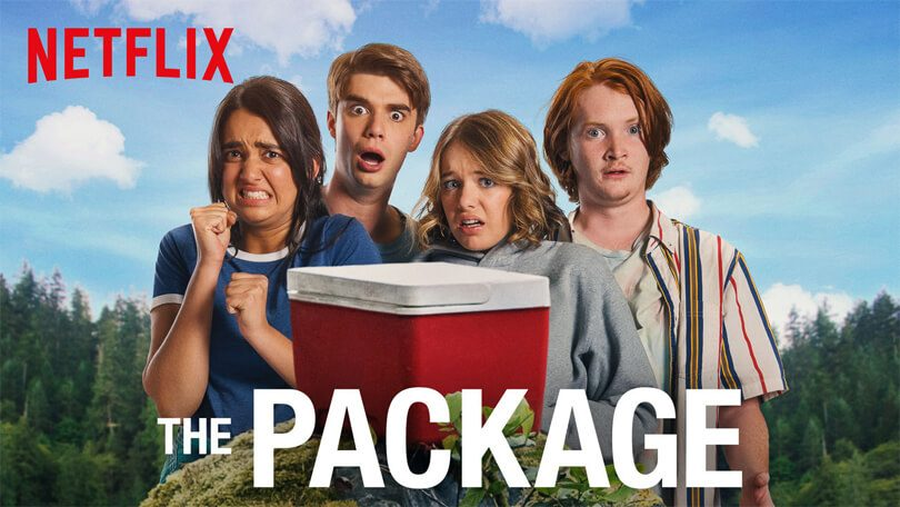 package the netflix (1)