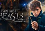 Fantastic Beasts Netflix