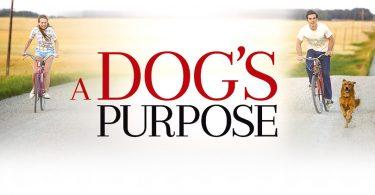A Dog's Purpose Netflix