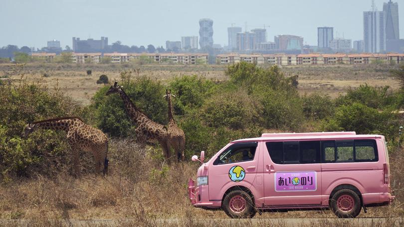 Ainori Love Wagon African Journey Netflix