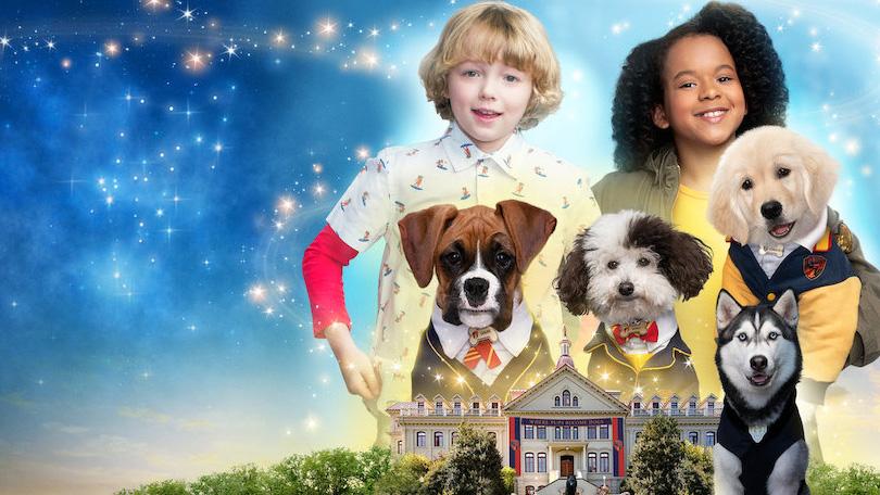 Pup Academy Netflix