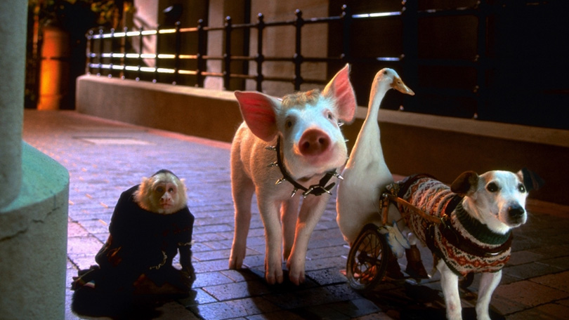 Babe pig city Netflix