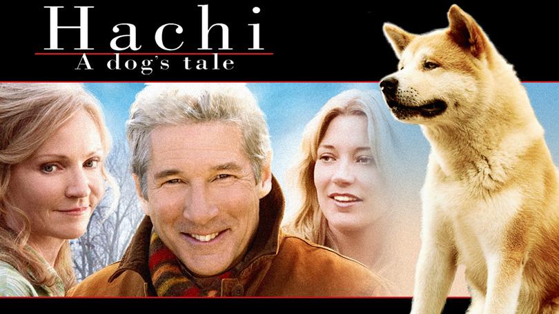 Hachi Netflix
