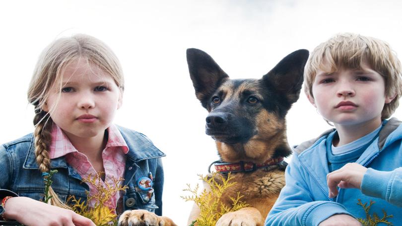 Puppy Patrol Netflix