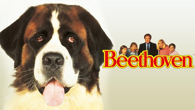 Beethoven Netflix