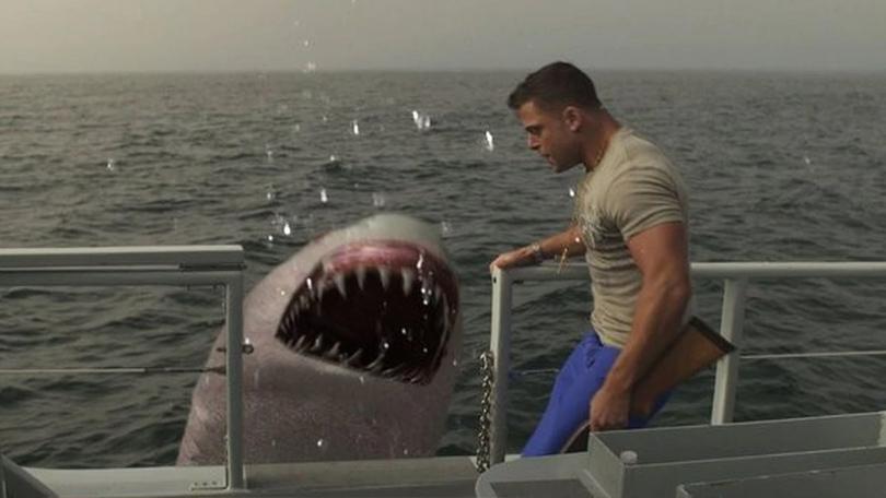 Jersey Shore Shark Attack Netflix
