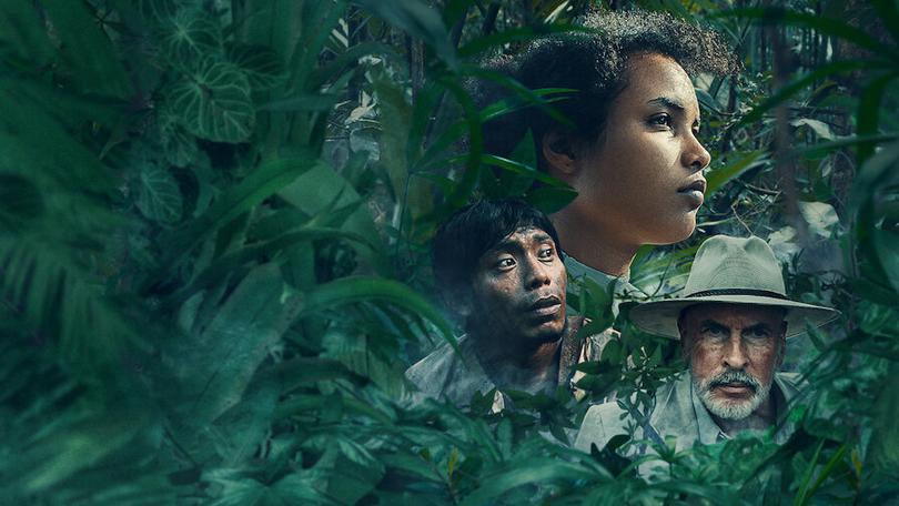 Selva Tragica Netflix